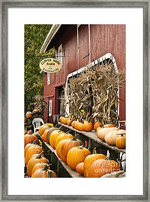 Autumn Farm Stand  Framed Print by John Greim