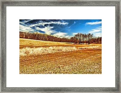 Autumn Field Framed Print by HD Connelly