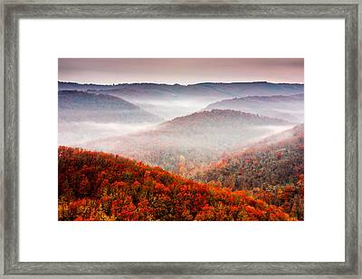 Autumn Fogs Framed Print by Evgeni Dinev