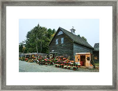 Framed Print featuring the photograph Autumn For Sale by Mary Hershberger