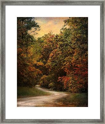 Autumn Forest 1 Framed Print by Jai Johnson