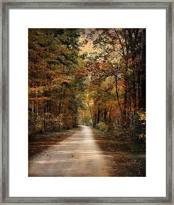 Autumn Forest 3 Framed Print by Jai Johnson