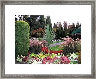 Autumn Gardens In Vancouver Framed Print by Will Borden