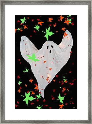 Autumn Ghost Framed Print by Debra     Vatalaro