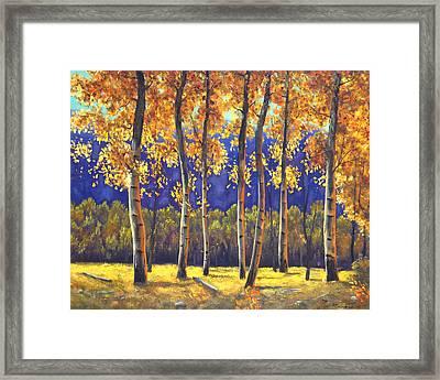 Autumn Glow Framed Print by Connie Tom