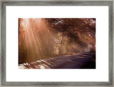 Framed Print featuring the photograph Autumn God Light by Tom Singleton