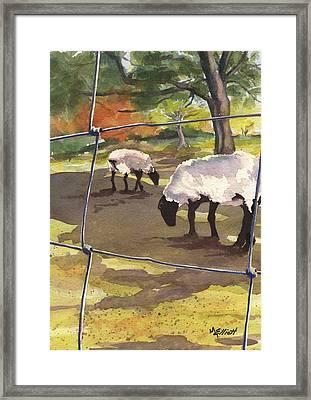 Autumn Graze Framed Print by Marsha Elliott