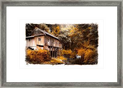 Autumn Grist Framed Print by Steve McKinzie