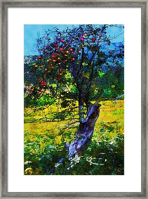 Autumn Harvest Framed Print by Ron Jones