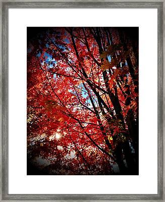 Autumn Hymn Framed Print by Anna Bree