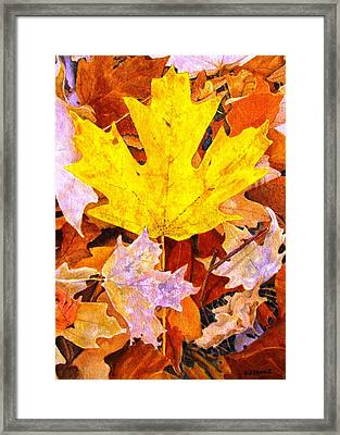 Autumn IIi Framed Print by Debra Spinks
