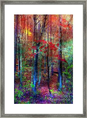 Autumn In Arkansas Framed Print by Judi Bagwell