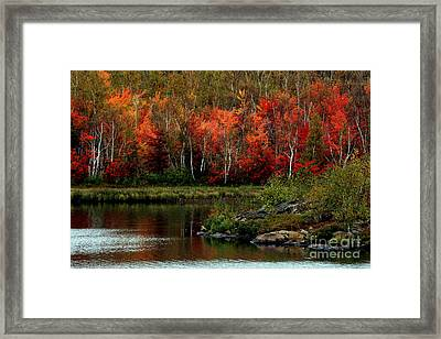 Autumn In Canada 2 Framed Print by Marjorie Imbeau
