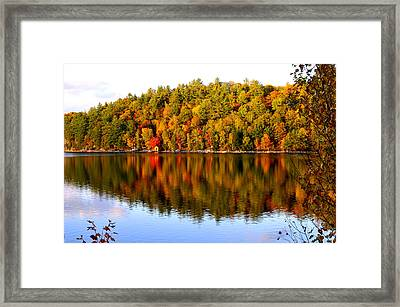 Autumn In Cottage Country Framed Print