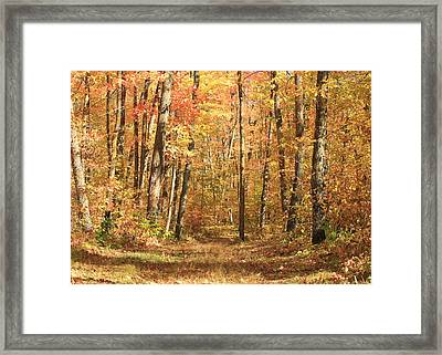 Framed Print featuring the photograph Autumn In Minnesota by Penny Meyers