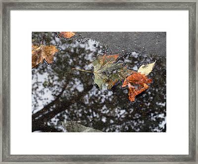 Autumn In New York City Framed Print by Chris Ann Wiggins