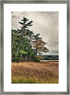 Framed Print featuring the photograph Autumn In Nh by Edward Myers