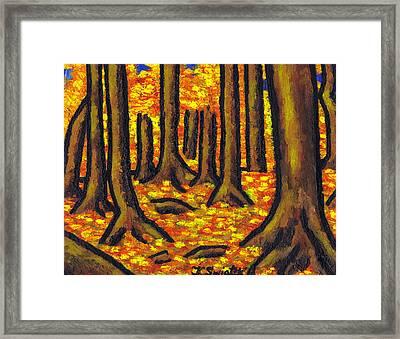 Autumn In Oakville Framed Print by Kamil Swiatek