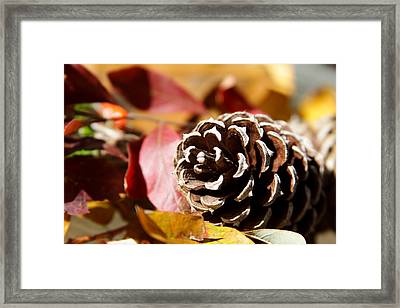 Autumn In Russet Framed Print