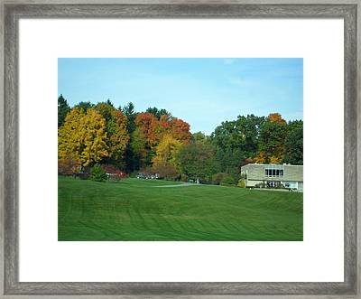Autumn In The Trees Framed Print