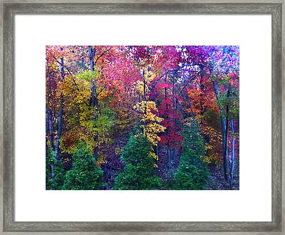 Autumn In Virginia Framed Print by Nabila Khanam