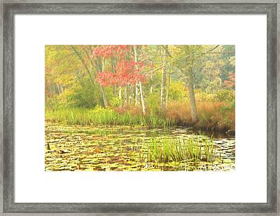 Autumn Is Here Framed Print by Karol Livote