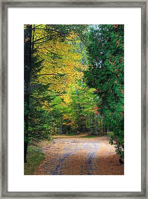 Autumn Framed Print by Kean Poh Chua