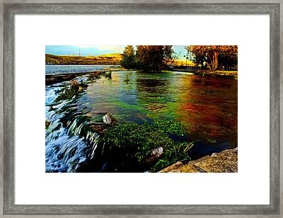 Autumn Kiss Framed Print by Joshua Dwyer