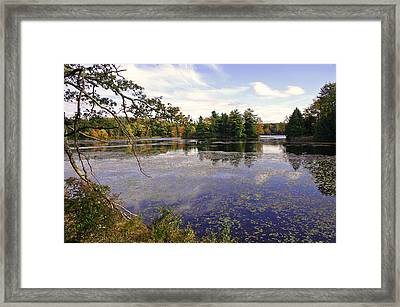 Autumn Lake Framed Print by David Rucker