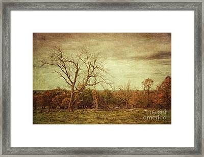 Autumn Landscape/digital Painting  Framed Print by Sandra Cunningham