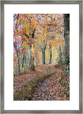 Autumn Lane Framed Print by Heavens View Photography