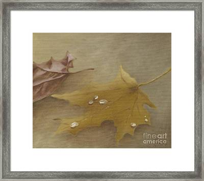 Autumn Leaves Framed Print by Annemeet Hasidi- van der Leij