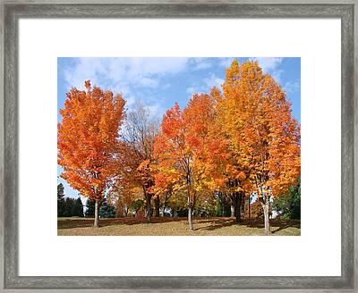 Autumn Leaves Framed Print by Athena Mckinzie