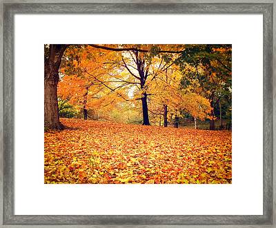 Autumn Leaves - Central Park - New York City Framed Print