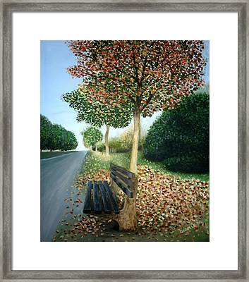 Autumn Leaves Framed Print by Gizelle Perez