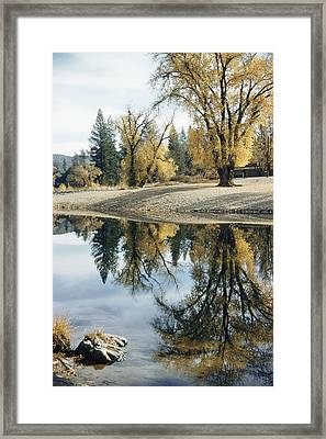 Autumn Leaves Growing Along A Gravel Framed Print by J. Baylor Roberts