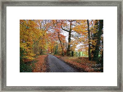 Autumn Leaves Framed Print by Harold Nuttall