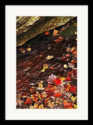 Clear Flowing Stream Framed Prints
