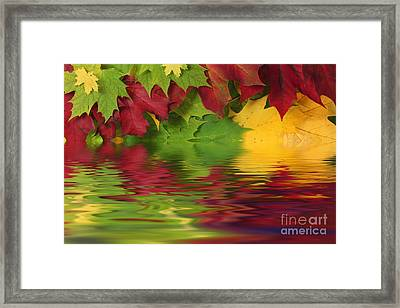 Autumn Leaves In Water With Reflection Framed Print