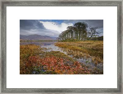 Autumn Leaves Loch Awe Framed Print by Gary Eason