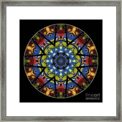 Autumn Leaves Reflection Mandala Framed Print by Janeen Wassink Searles