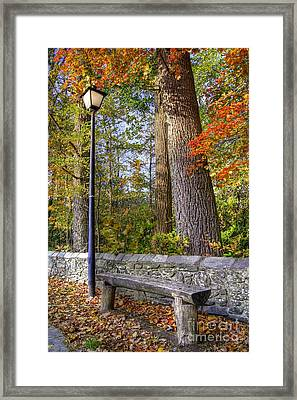 Autumn Light Framed Print by Benanne Stiens