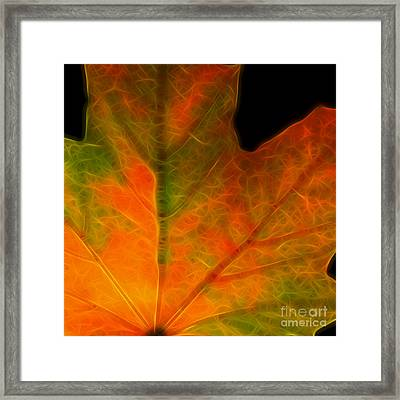 Autumn Maple Leaf - Square Framed Print by Wingsdomain Art and Photography