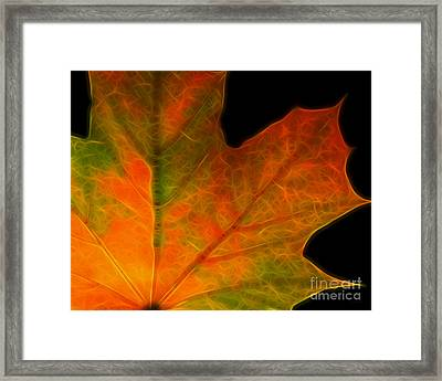 Autumn Maple Leaf Framed Print by Wingsdomain Art and Photography