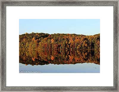 Framed Print featuring the photograph Autumn Mirror by Rachel Cohen