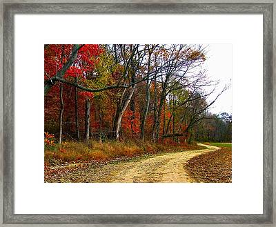 Autumn On Bottomland Road Framed Print by Julie Dant