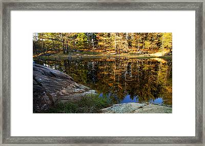 Autumn On Go Home Lake Framed Print by Carol Hathaway