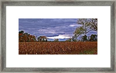 Autumn Overcast 12 Framed Print by Dave Dresser
