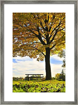Autumn Park Framed Print by Elena Elisseeva