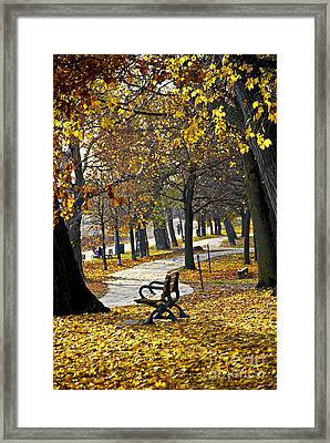 Autumn Park In Toronto Framed Print